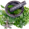 A Guide to Herbal Breast Enhancement